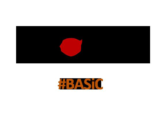 inFormal Basic